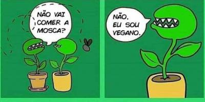 A planta vegana e suas aventuras