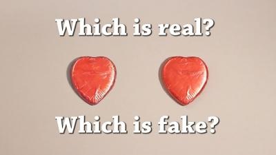 Você consegue adivinhar qual é o verdadeiro?