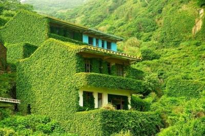 Veja alguns lugares abandonados que foram retomados pela natureza #2