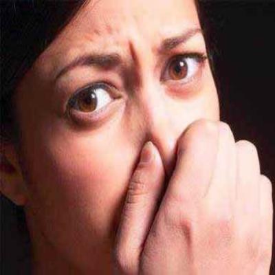 Que cheiro ruim! A importância do odor na natureza