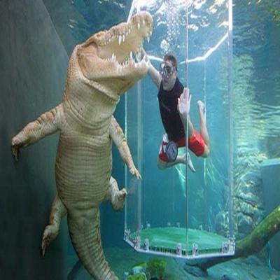 A gaiola dos crocodilos na Austrália - A gaiola da morte