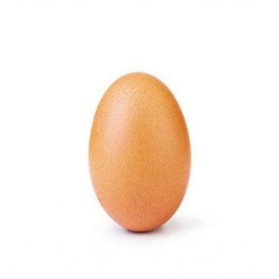 O que veio primeiro, o ovo ou a galinha?