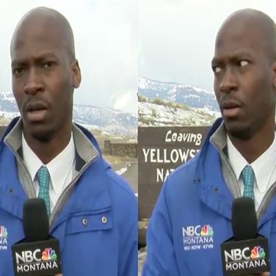 Repórter de TV quase é atropelado por rebanho de búfalos