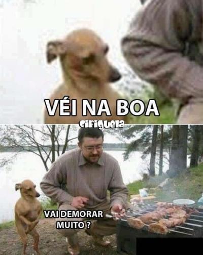 Quando o seu dog está com fome