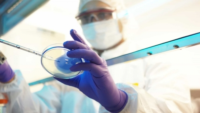 Cientistas relatam ameaças de morte e agressões durante a pandemia