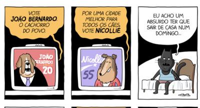 Um ponto de vista das eleições