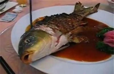 Peixe Yin Yang - Um prato controverso que está vivo e morto