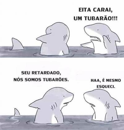 Eita, um tubarão!!!