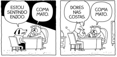 O Doutor Cão