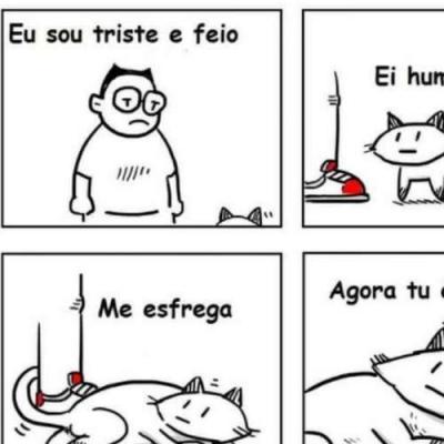 Um gato sábio
