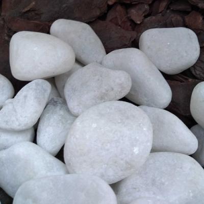 A primeira pedra