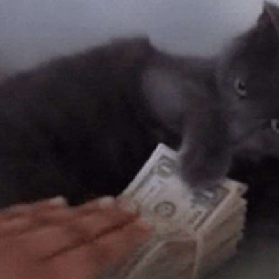 O famoso Gato vigarista