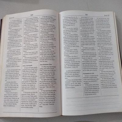 A Bíblia, por ela mesma