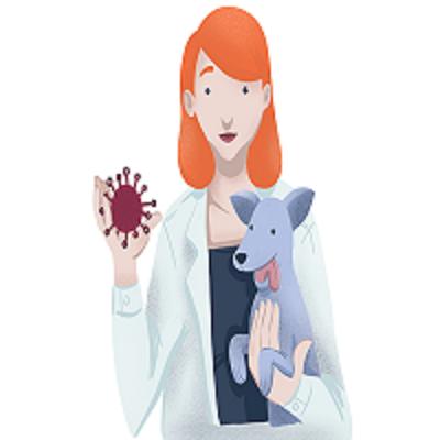 Evolução no tratamento contra o câncer em animais