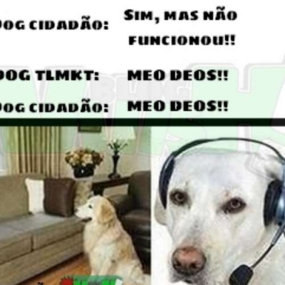 SOS Canino