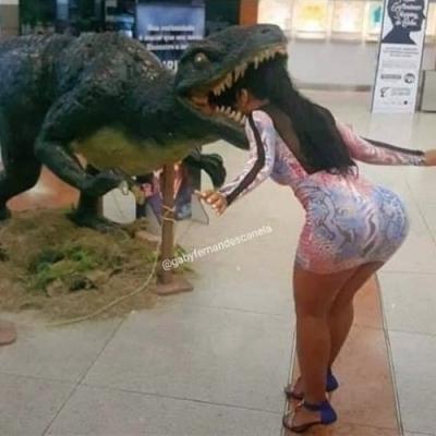 Bicho burro, comendo pelo lado errado!