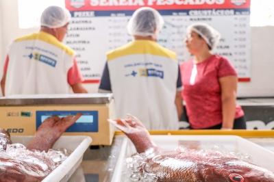 Fiscalização na venda do peixe