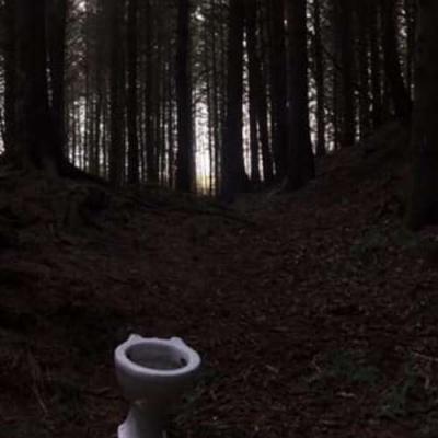 Banheiro selvagem