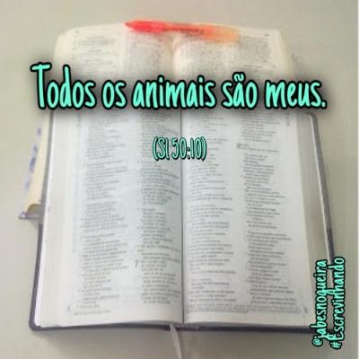 Fauna Bíblica - Antigo Testamento