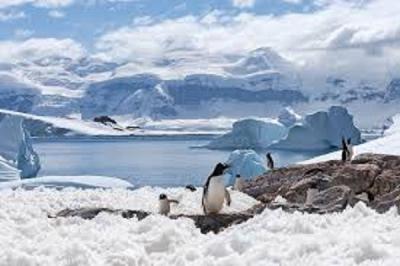 Algum país é dono da Antártida?