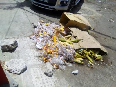 Comida no Lixo